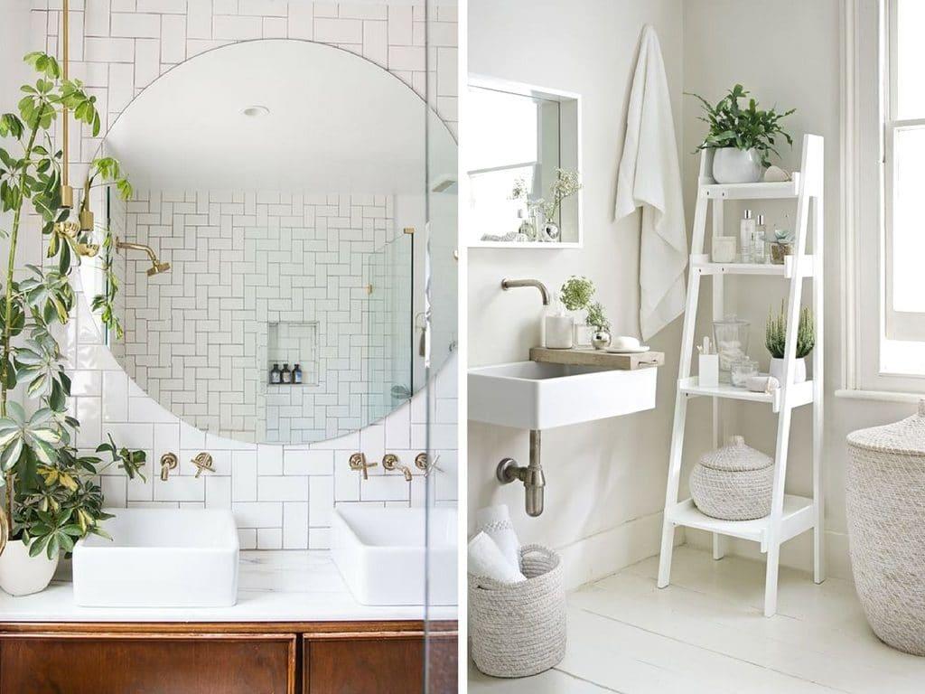 Trendy badkamer planten zijn populair rolgordijnwinkel