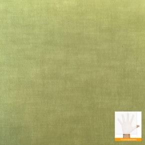 rolgordijn groen transparant
