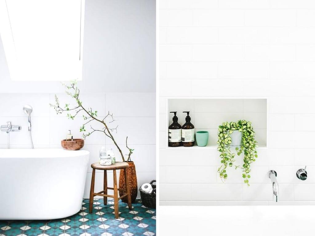 Planten in de badkamer rolgordijnwinkel
