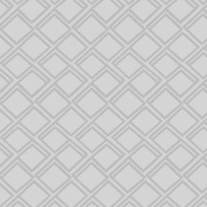 rolgordijn grijs