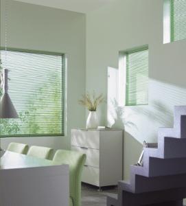 Mintgroene jaloezieen voor kleine ramen in woonkamer.