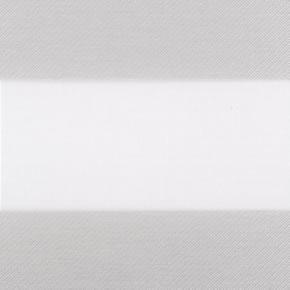 Verduisterend duorolgordijn lichtgrijs