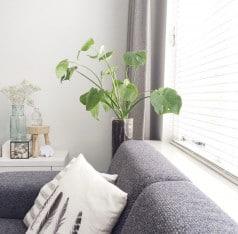 woonkamer houten jaloezie wit